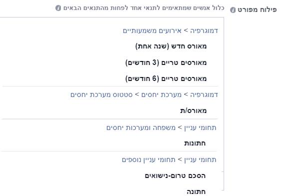 פייסבוק פילוח קמפיין ממומן