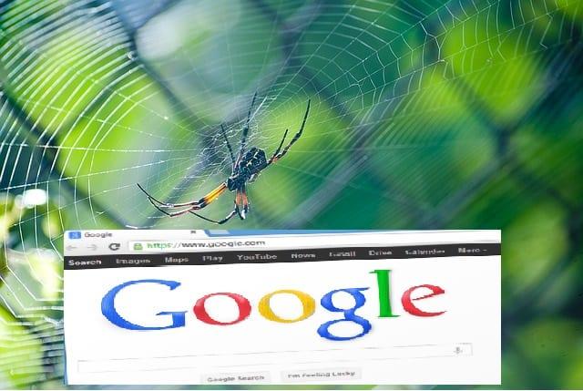 עכביש גוגל - Google Spider