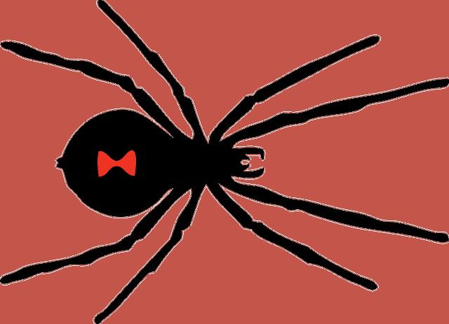 סורק – CRAWLER