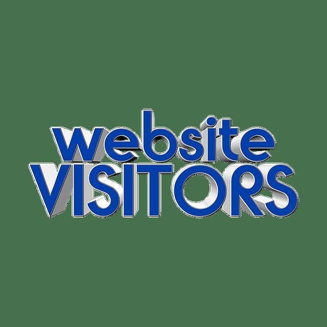 מבקר ייחודי – Unique Visitor