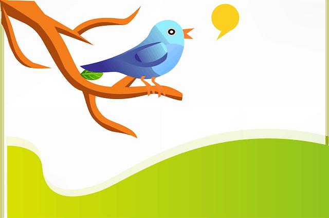 ציוץ - Tweet
