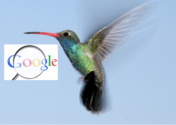 גוגל יונק הדבש - Google Hummingbird